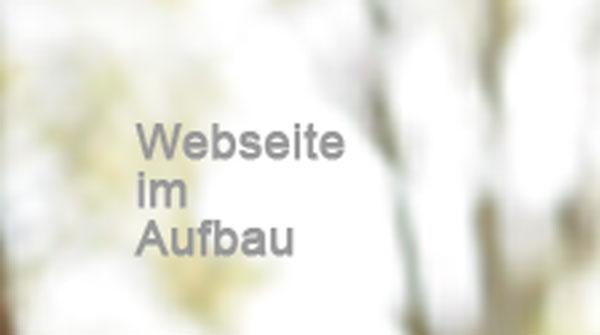 Webseite im Aufbau
